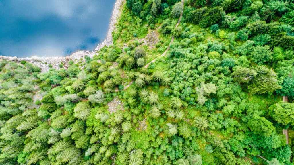 Imagen de un paisaje.