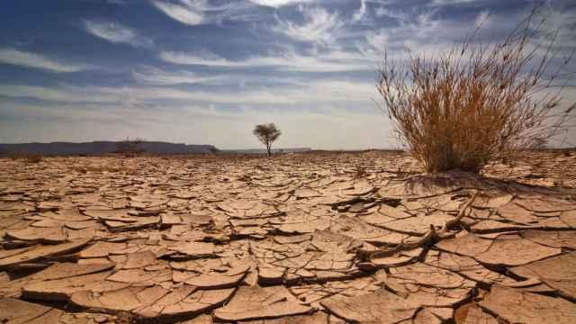 Imagen de archivo de una sequía.