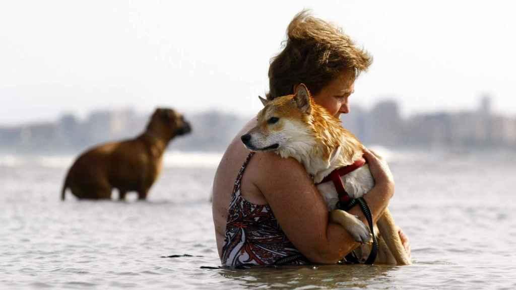 Una mujer abraza a su perro en el mar.