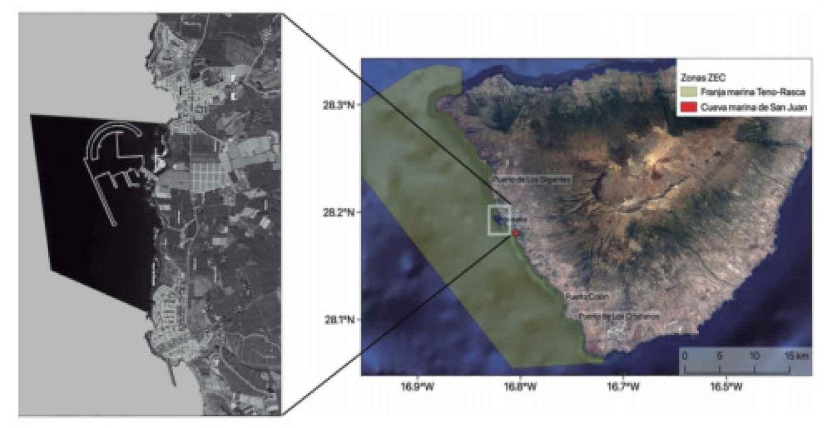 Imagen de la costa tinerfeña con los cuatro puertos y el proyecto de Fonsalía.