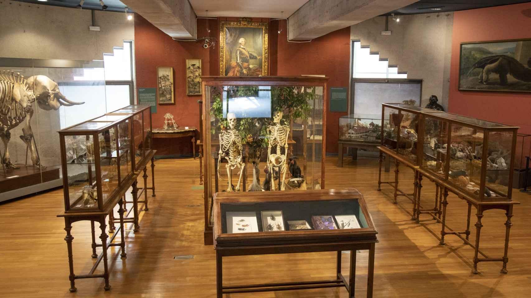 250 aniversario del Museo Nacional de Ciencias Naturales