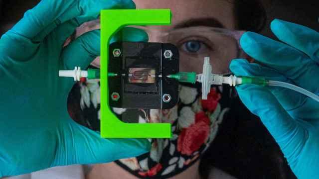 Implante impreso en 3D capaz de detectar y suministrar insuila