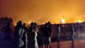 Incendio forestal en Limni, en la isla de Evia (Grecia).