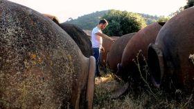 Tierra Savia recupera las elaboraciones tradicionales de Sierra Morena.