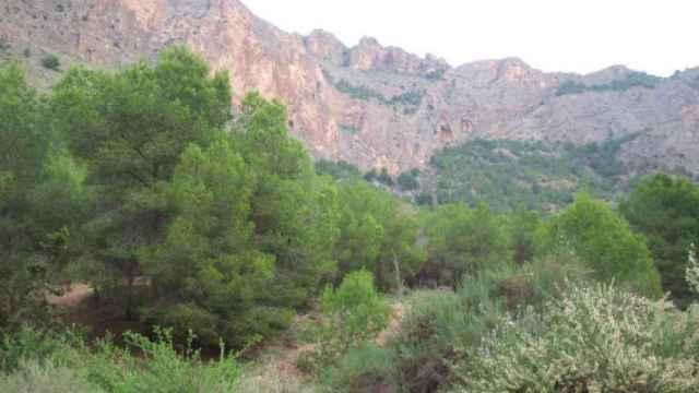 Cocentaina será la sede del primer Congreso Internacional de las Montañas el próximo octubre