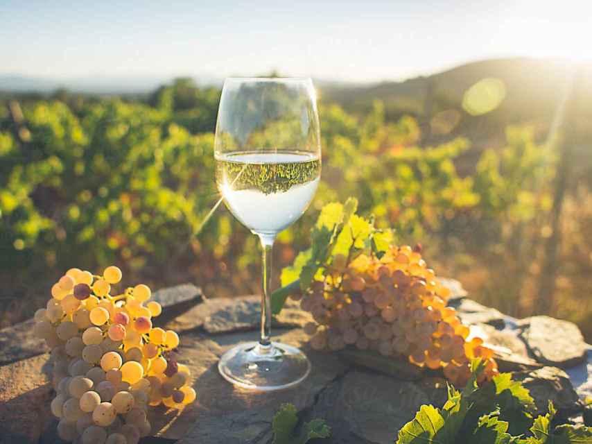 La variedad de uva tiene que ver en la intensidad de un vino blanco.