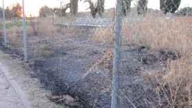 Pasto quemado junto al velódromo del Polígono de Toledo. Foto: AA. VV. El Tajo.