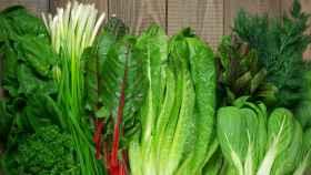 Varias verduras de hoja verde.