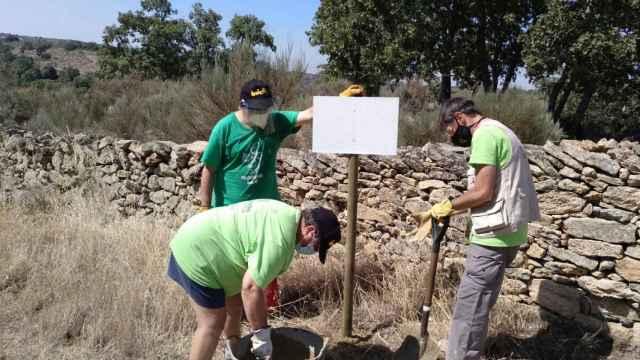 Voluntariado social hinojosa saldeana (3)