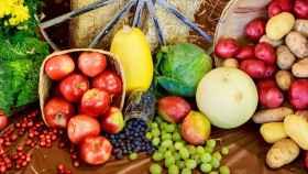 Verduras de temporada.
