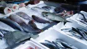 Pescados conservados en hielo en el punto de venta.
