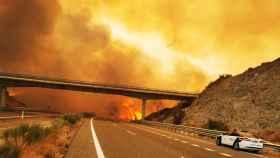 Incendio de Sierra Bermeja (Málaga). Foto: Guardia Civil