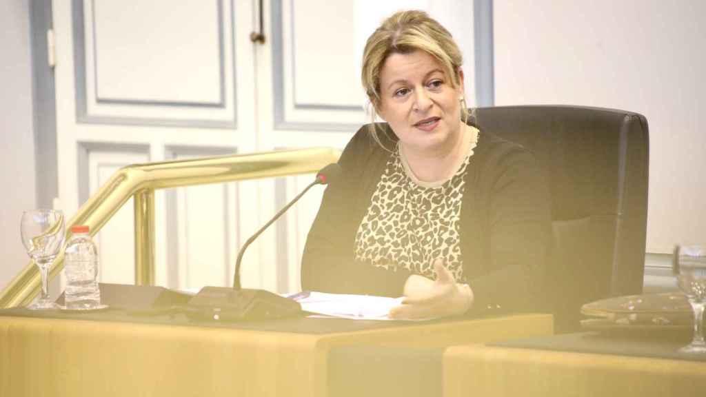La vicepresidenta y diputada de Ciclo Hídrico, Ana Serna.