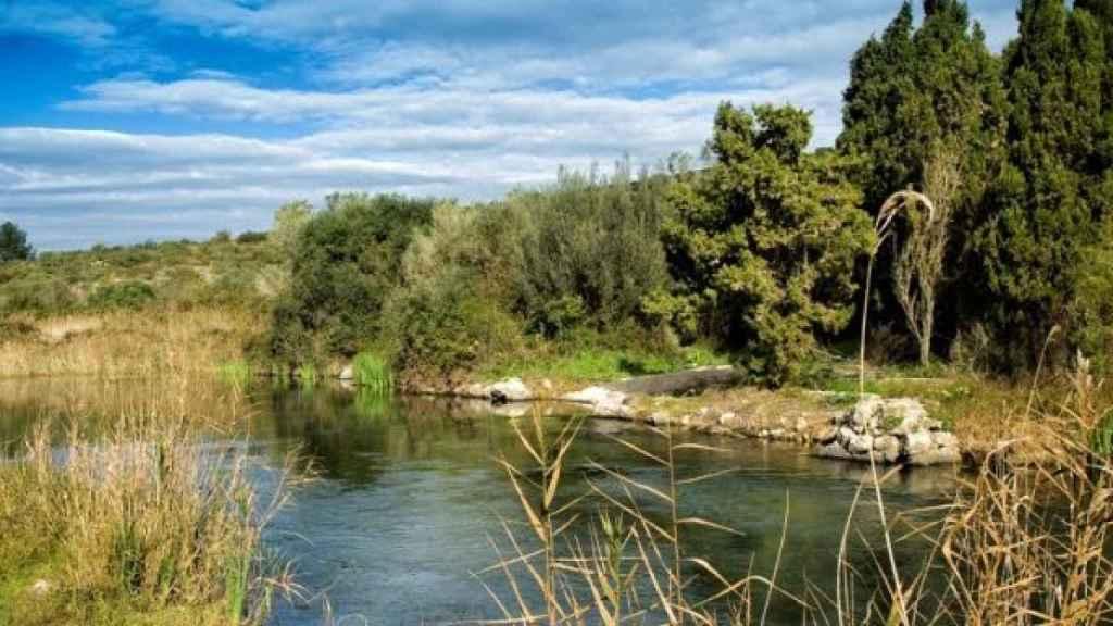 Parque Natural de la Marjal de Pego-Oliva.