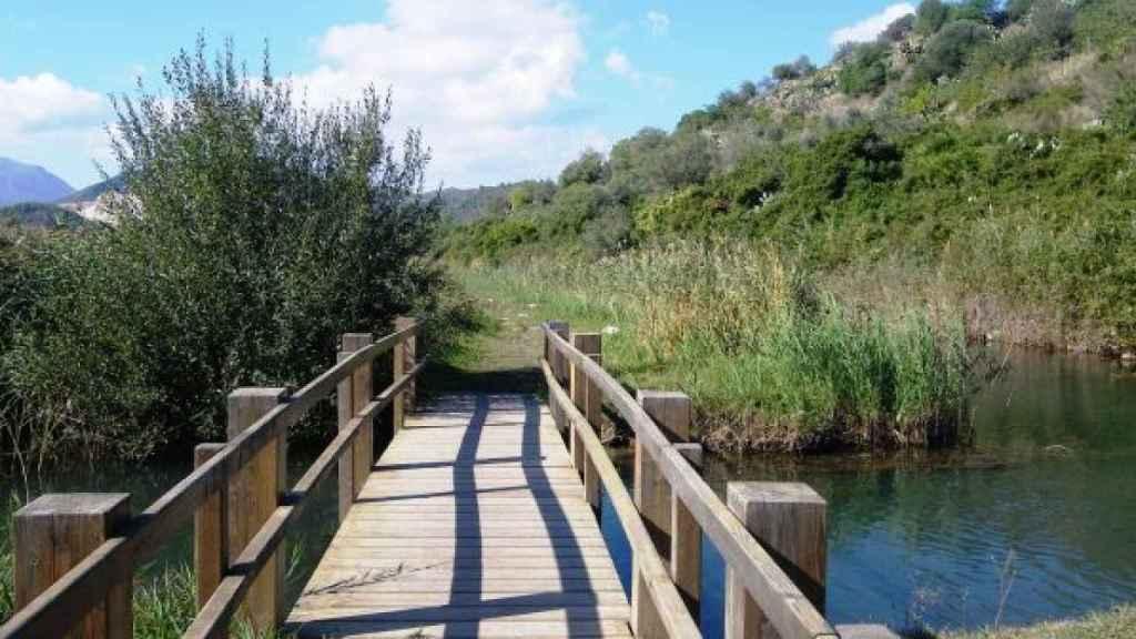 El Parque Natural de la Marjal de Pego-Oliva es una zona húmeda situada entre las provincias de Alicante y Valencia.