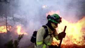 El incendio de Málaga ya ha calcinado casi 8.000 hectáreas.