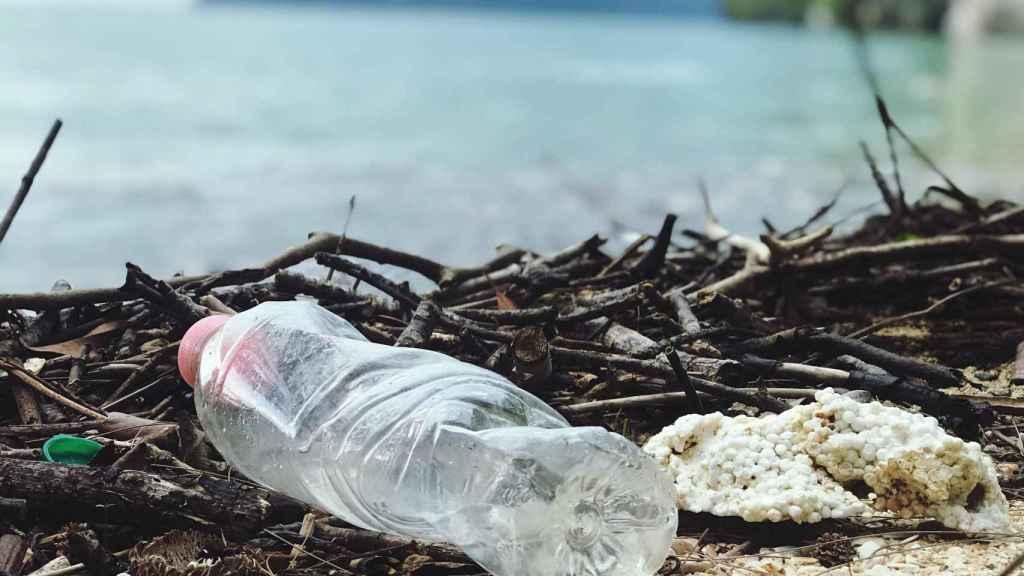 Los ecosistemas marinos sufren el efecto de no reciclar los plásticos
