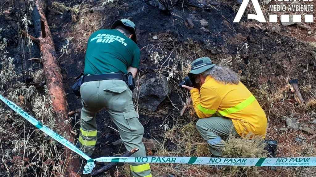 Varios técnicos trabajan en la investigación del incendio de Málaga.