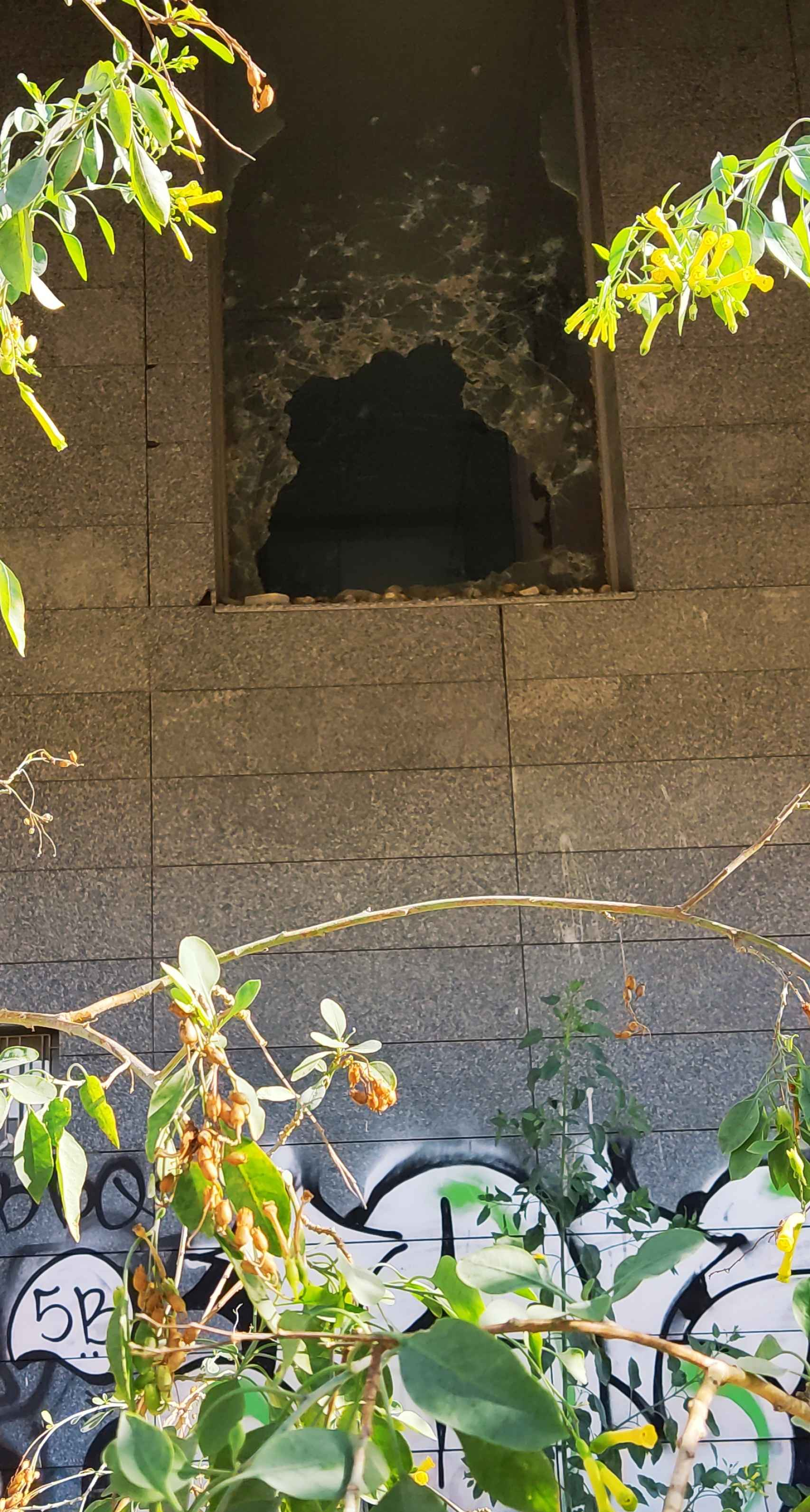 Uno de los numerosos cristales rotos que hay en el edificio.