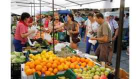 Mercado burgos