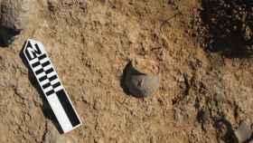 La excavación de la UA en Hellín ha encontrado un gran almacén en el yacimiento donde trabajan.