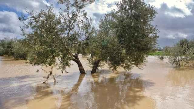 La Fundación Eurocaja Rural organizará un gran encuentro para prevenir desastres naturales