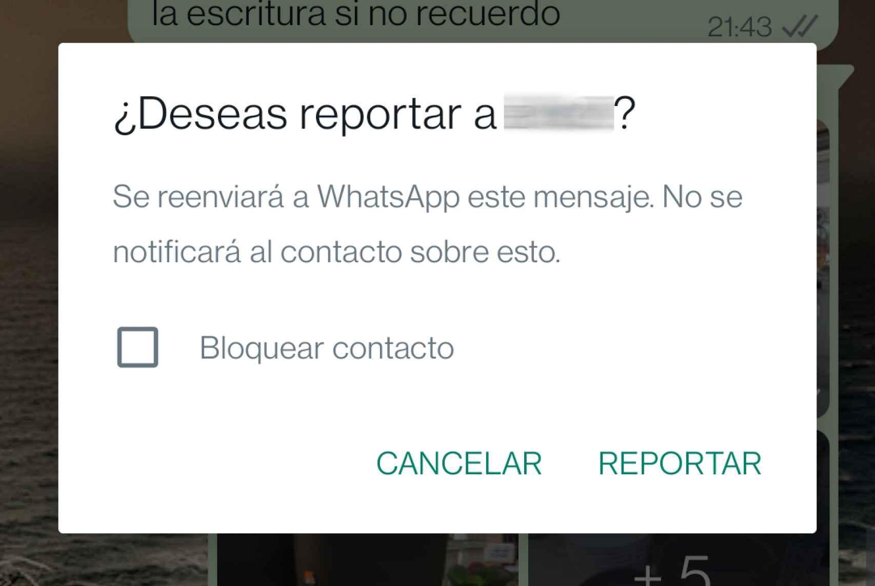 Nueva función para reportar un mensaje
