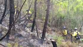 Trabajos de extinción del fuego en Sierra Bermeja, Málaga.