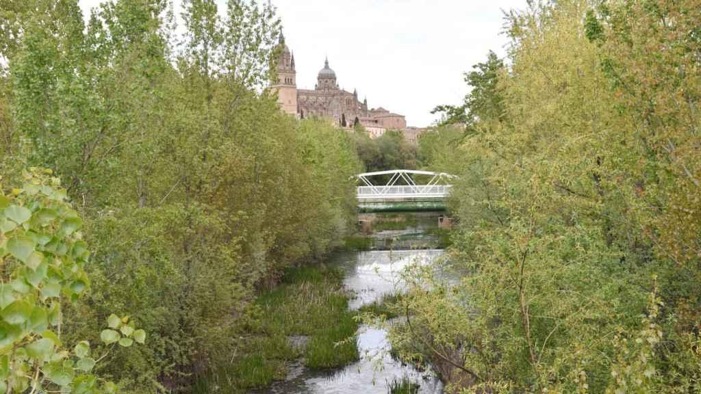 El río Tormes, patrimonio natural y turístico de Salamanca