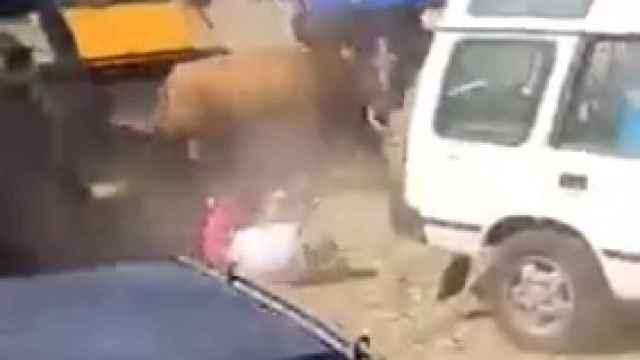 Polémico vídeo: a patadas desde el coche contra el toro que embestía a un hombre en Guadalajara