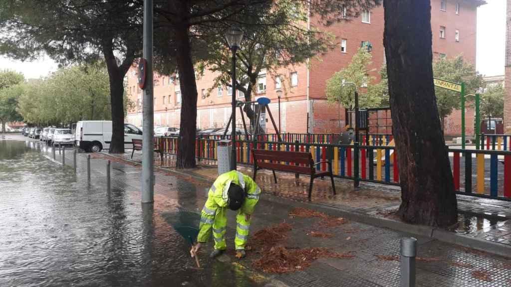 Trabajos de los servicios del Ayuntamiento. Foto: Twitter @TalaveraAyto