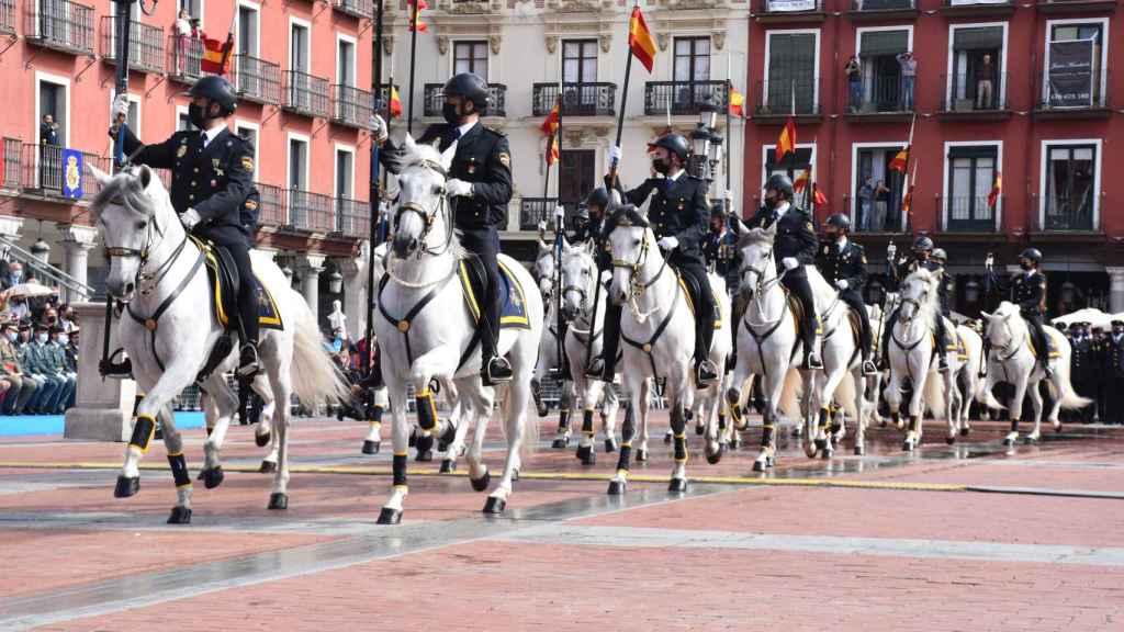 Desfile de caballos de la Policía Nacional