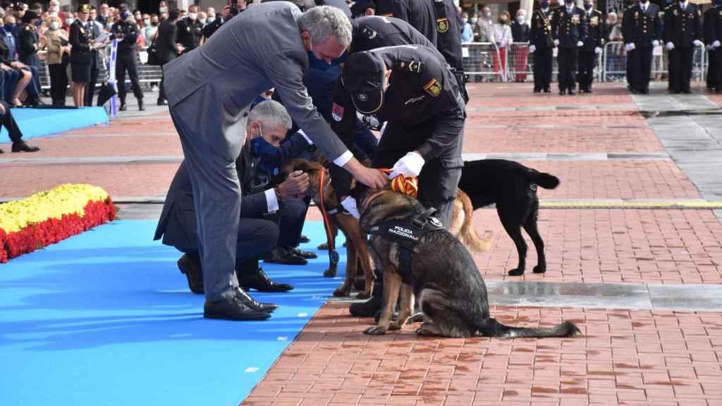 Los perros de la Policía también tuvieron su homenaje