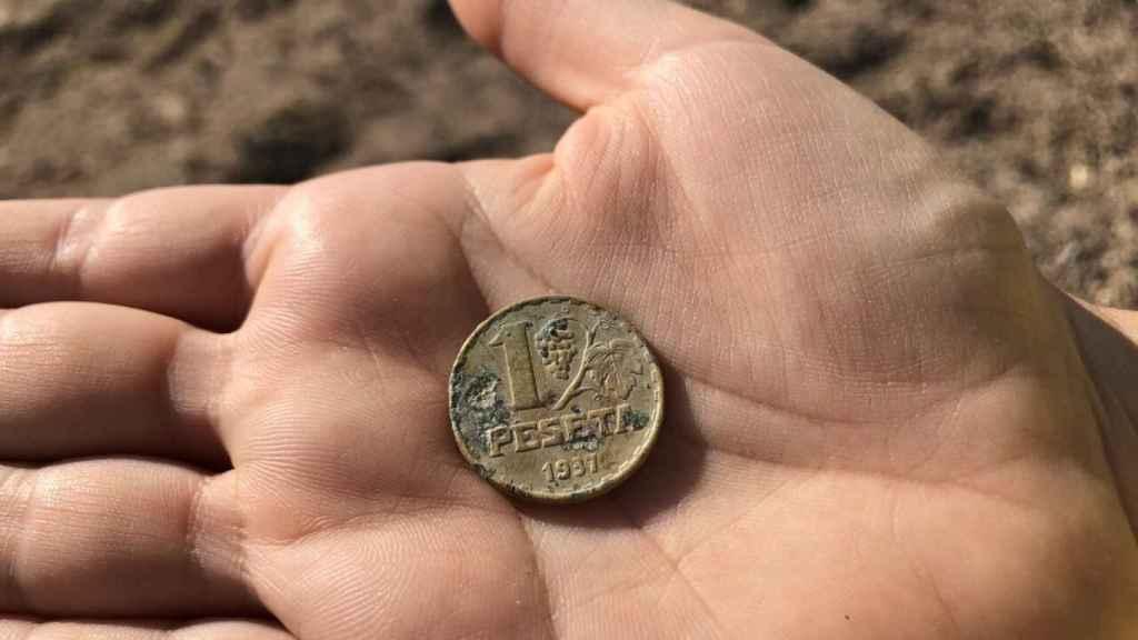 Moneda republicana localizada durante la prospección.