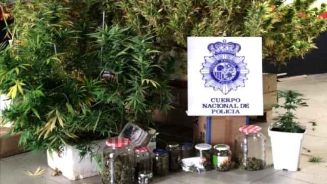 Operación Gaviota, en Cuenca