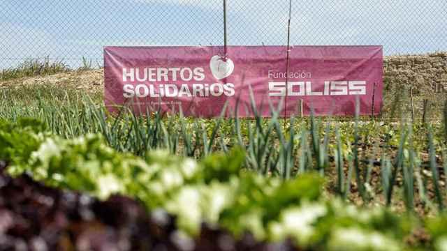 Huestos-Solidarios-Soliss-