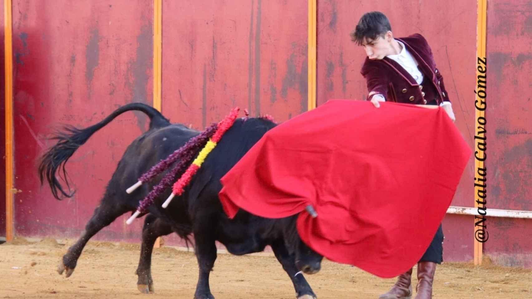 Festival taurino de Mayorga