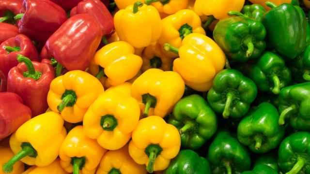 Cómo cocinar los pimientos, una hortaliza de invernadero con más vitamina C que las naranjas