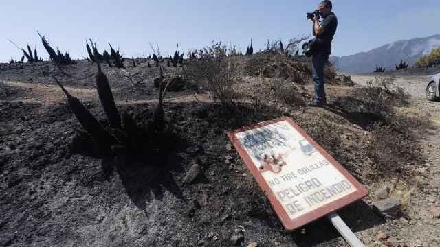 Estragos del incendio de Sierra Bermeja.