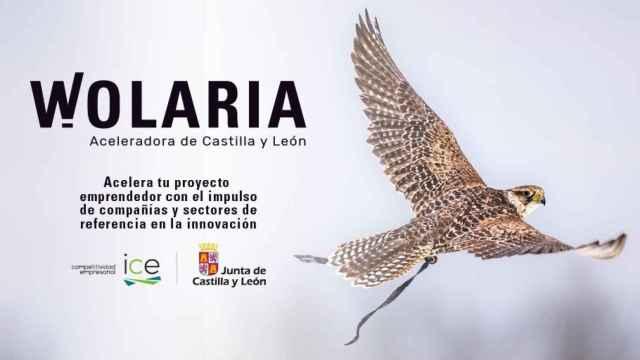 La aceleradora Wolaria impulsa 15 nuevos proyectos de emprendimiento innovador en la región