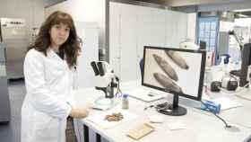 La investigadora Elena Castillo-Lorenzo mostrando las semillas en un estereoscopio para la formación.
