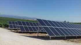 Bodegas González Byass se alía con Iberdrola, Endesa X y Contigo Energía para instalar fotovoltaica