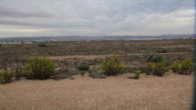 Terrenos de La Hoya de Torrevieja donde se construirá el nuevo Plan Parcial.