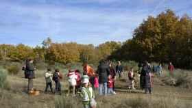 Participación infantil en las jornadas de educación ambiental