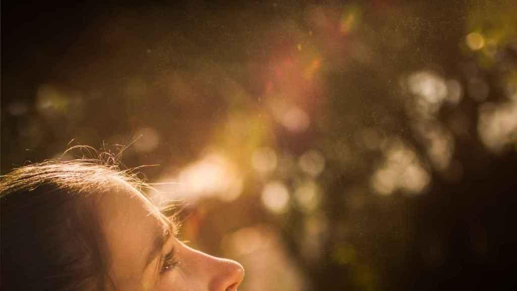 Imagen parcial del cartel de Celeste