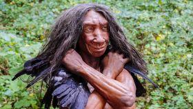 Reconstrucción de un 'Homo neanderthalensis'.