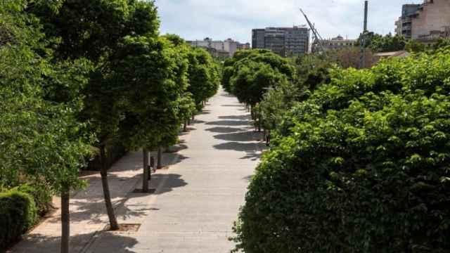 Fotografía de un parque en una zona urbana.