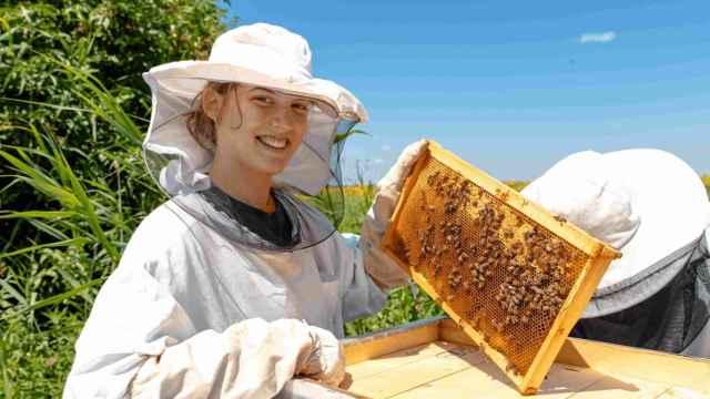 Mujer recolectando miel en el campo.