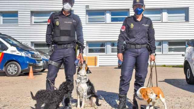 Fotogalería |  Unidad de Guías Caninos de Castilla y León
