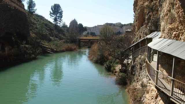 Rutas junto al río Segura para descubrir Murcia